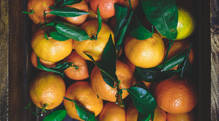 Horecava - foodfotografie mag leven sinaasappels