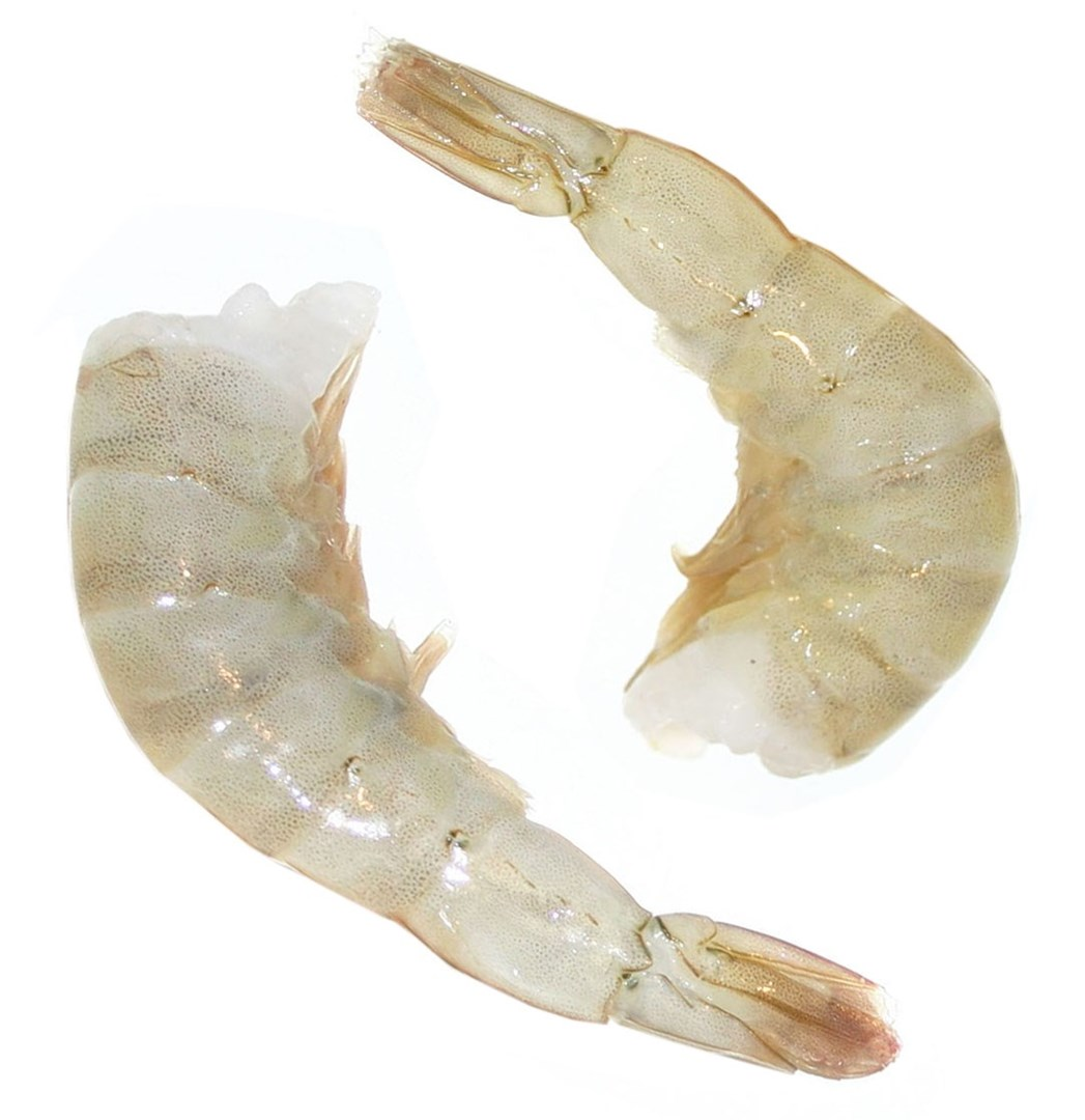 Productafbeelding Scampi SEAWATER HLSO IQF 16/20 EASY PEEL