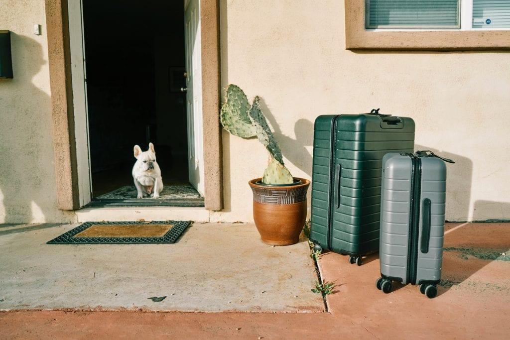 10 diervriendelijke hotels | Horecava