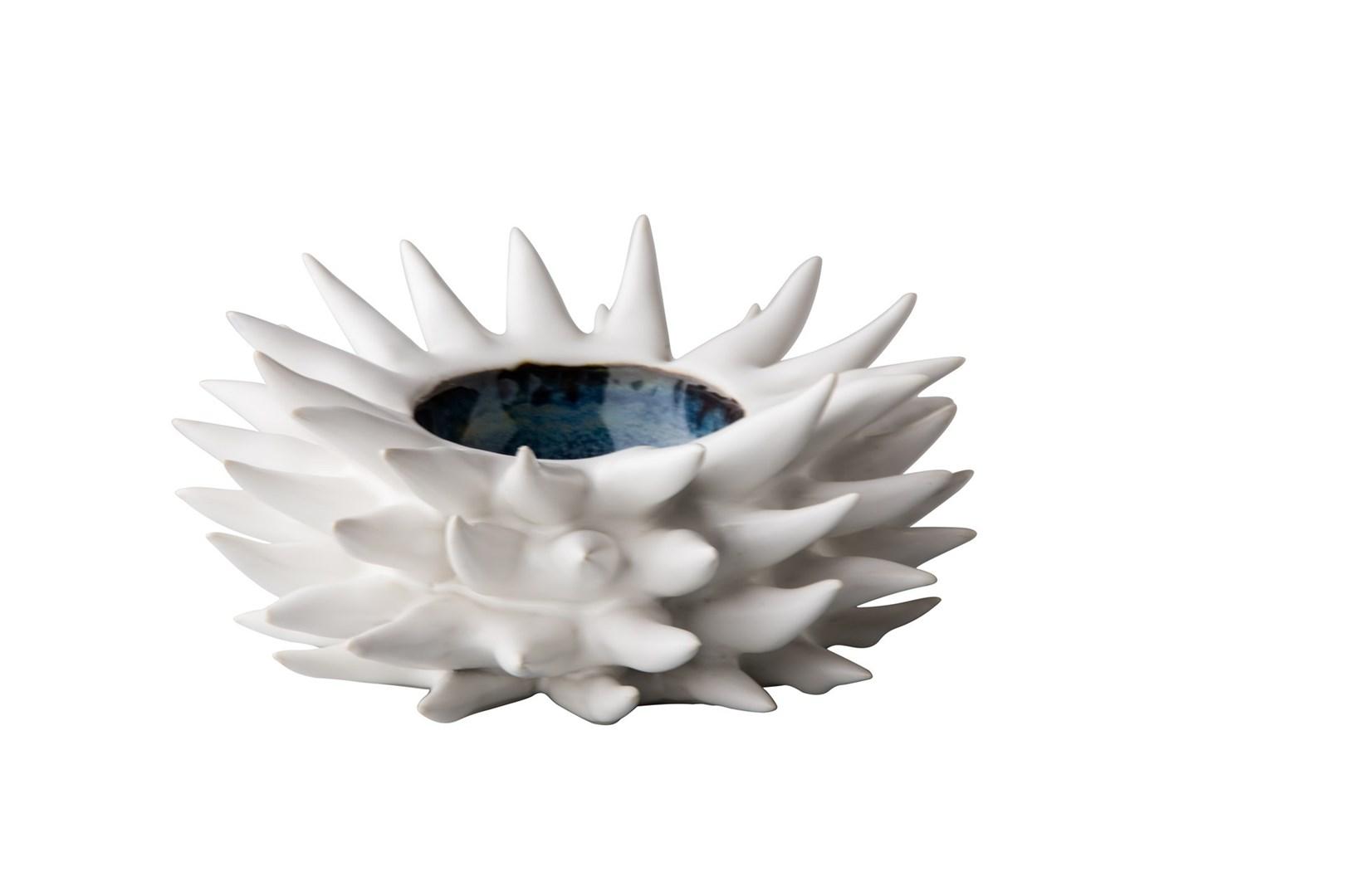 Productafbeelding Zee egel 18 cm