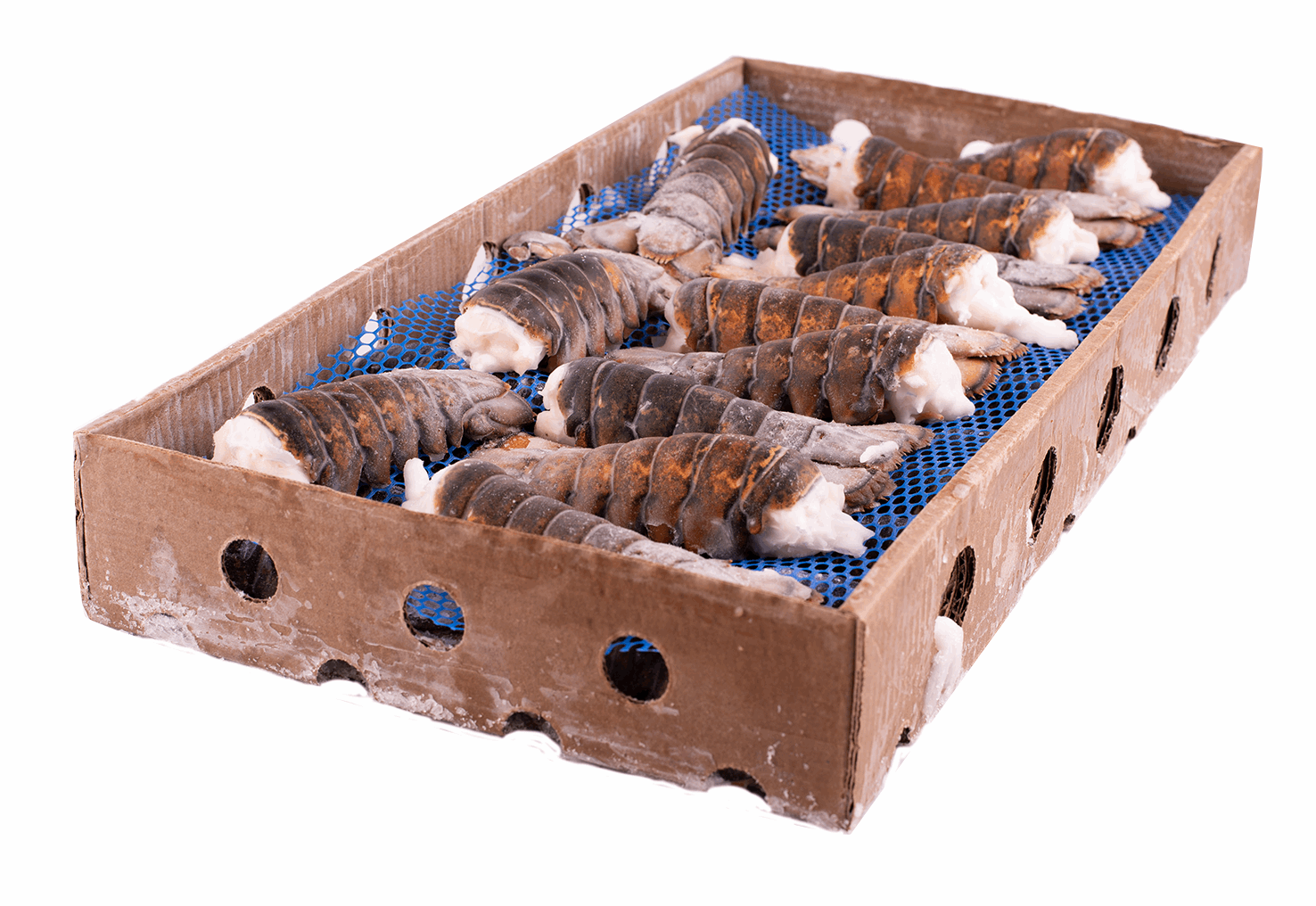 Productafbeelding LOBSTERTAIL CANADIAN UHP 140-170GR. BOX 4,54KG, FRZ