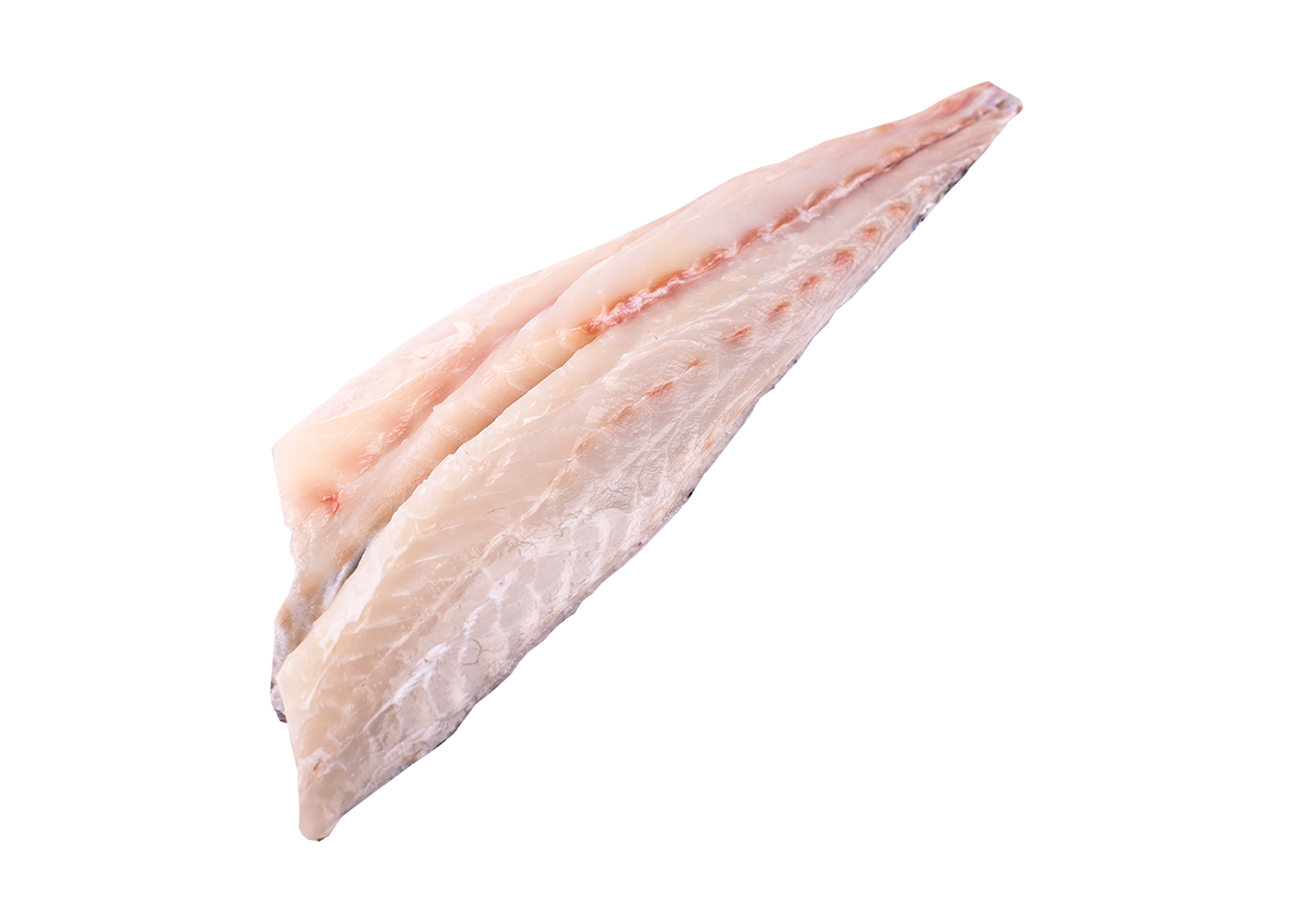 Productafbeelding CORVINA FILLET WITH SKIN SCALES OFF