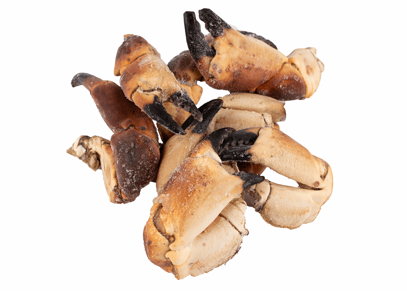 Productafbeelding CRAB CLAWS FROM BROWN CRAB, FROZEN