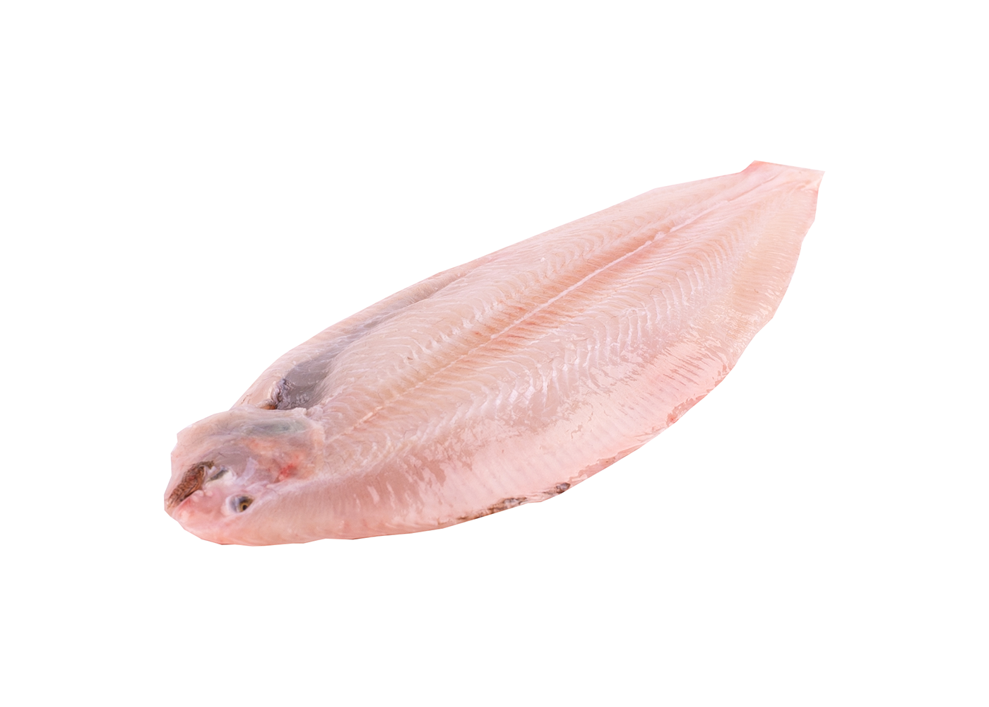Productafbeelding DOVER SOLE SKINLESS FRESH SIZE 100GR APPROX