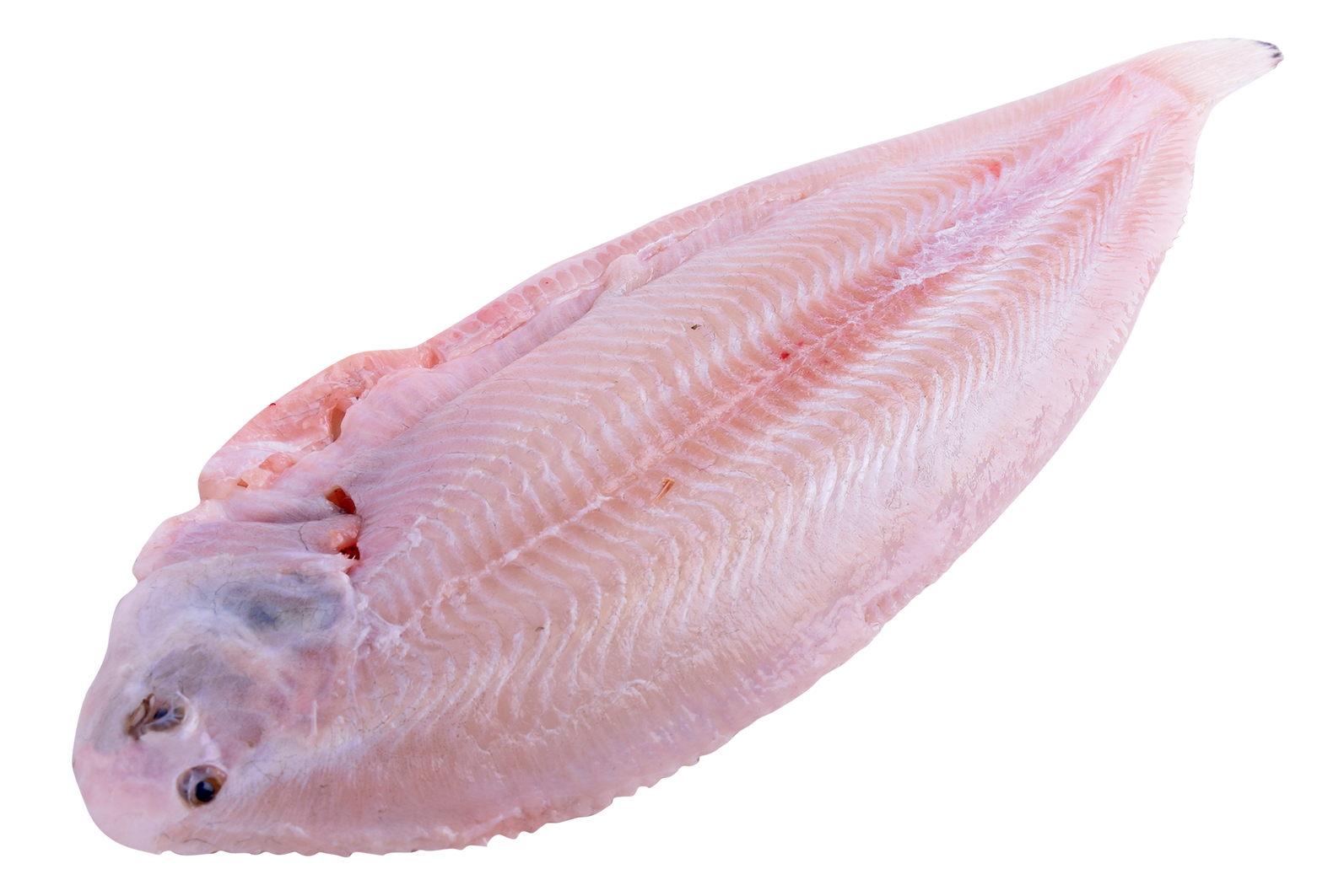 Productafbeelding DOVER SOLE SKINLESS SIZE 600-650GR