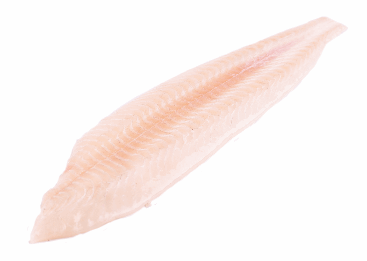 Productafbeelding DOVERSOLE DOUBLE FILLET W/O SKIN
