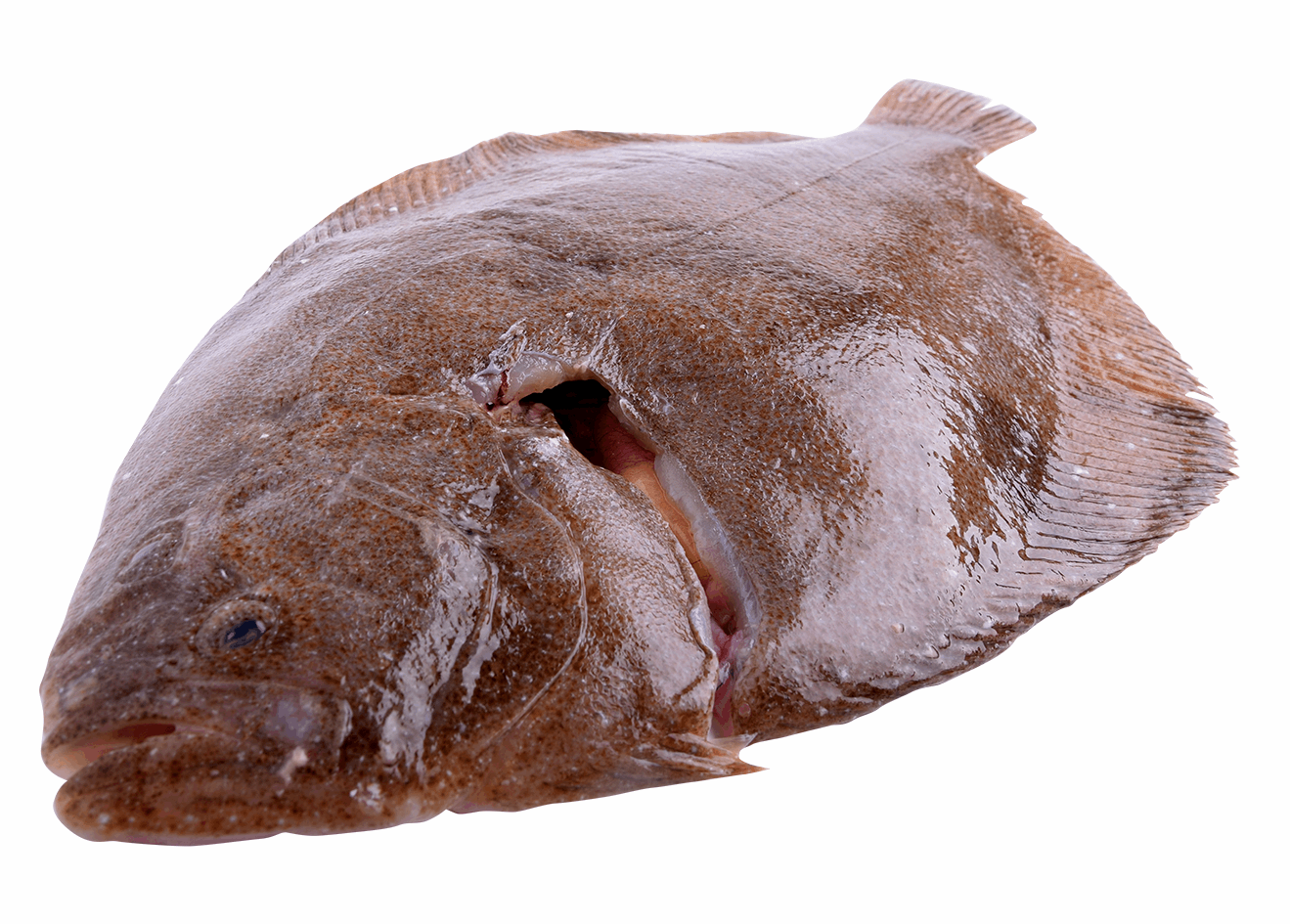 Productafbeelding BRILL WHOLE FRESH 2 KG UP