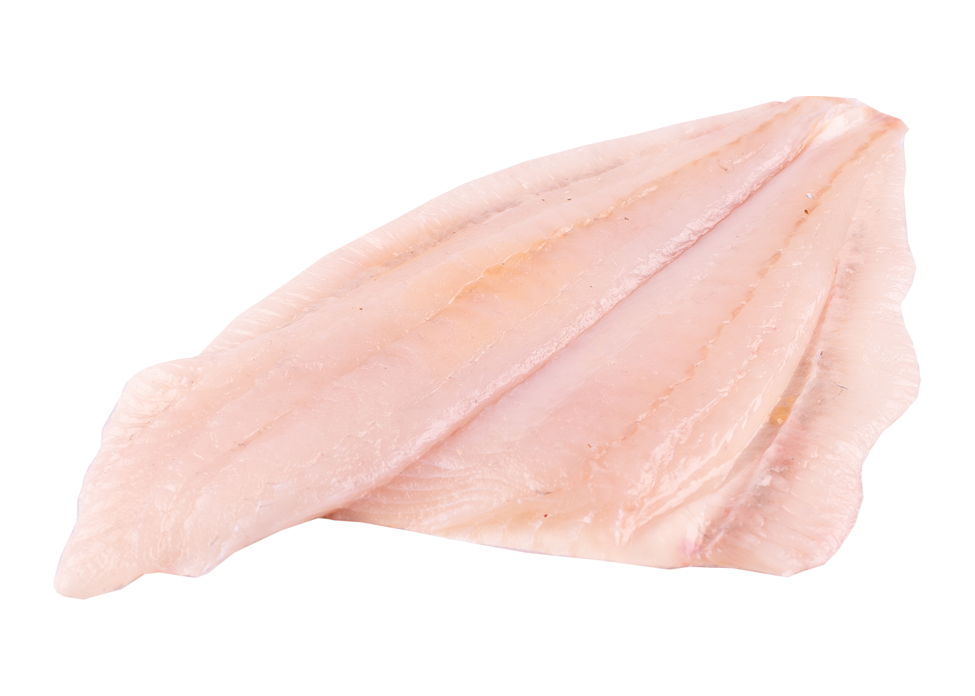 Productafbeelding BRILL FILET SKIN ON 1-2 KG