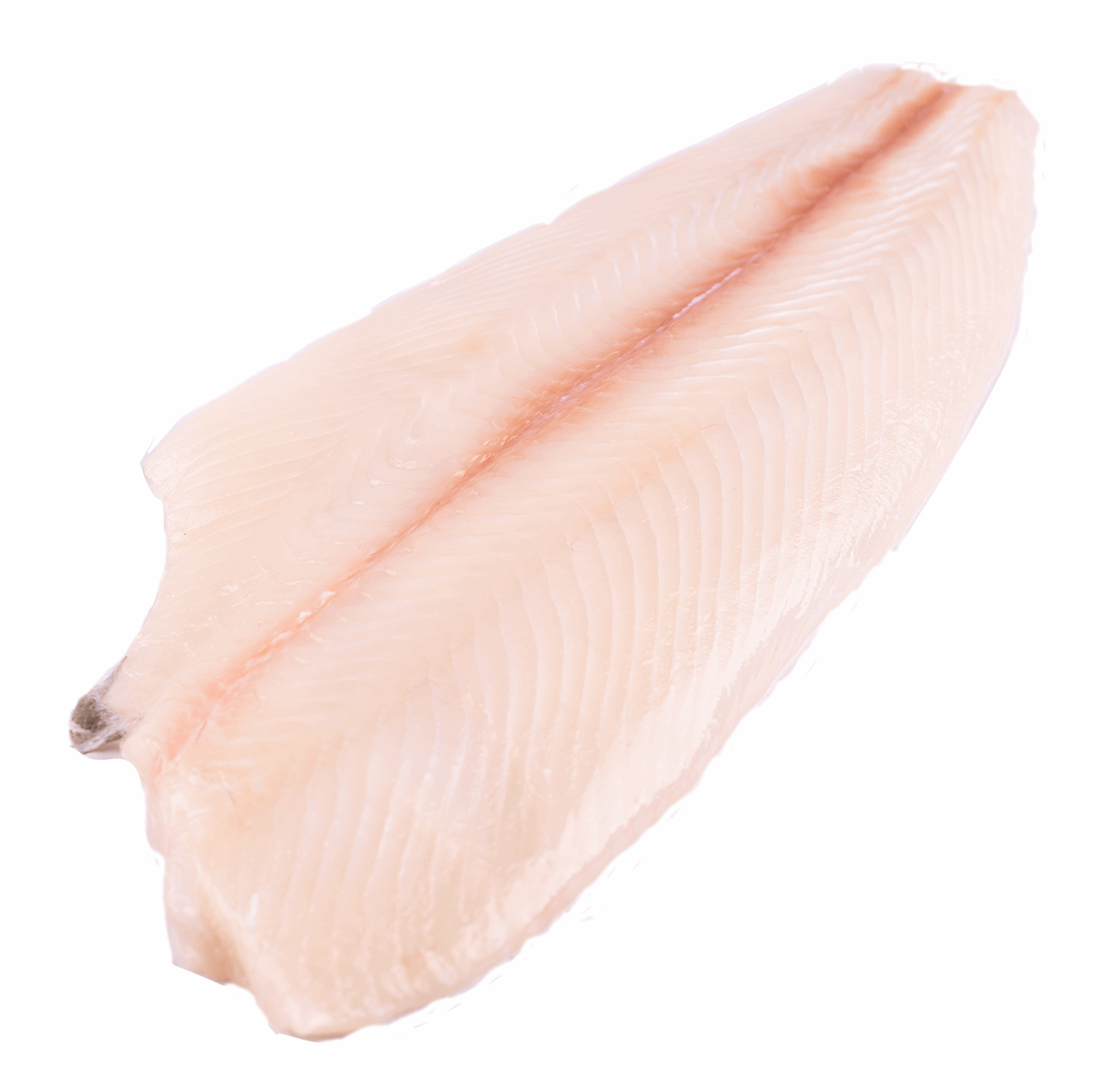 Productafbeelding HALIBUT FILET W/O SKIN 3-5KG HALIBUT WITH HEAD