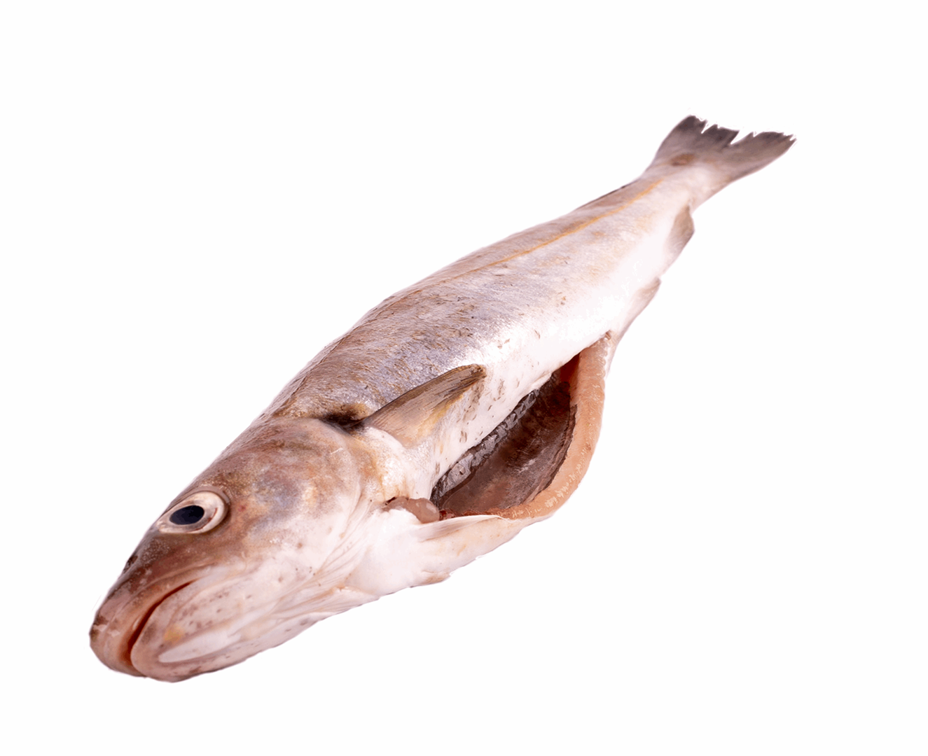 Productafbeelding WHITING WHOLE GUTTED FRESH