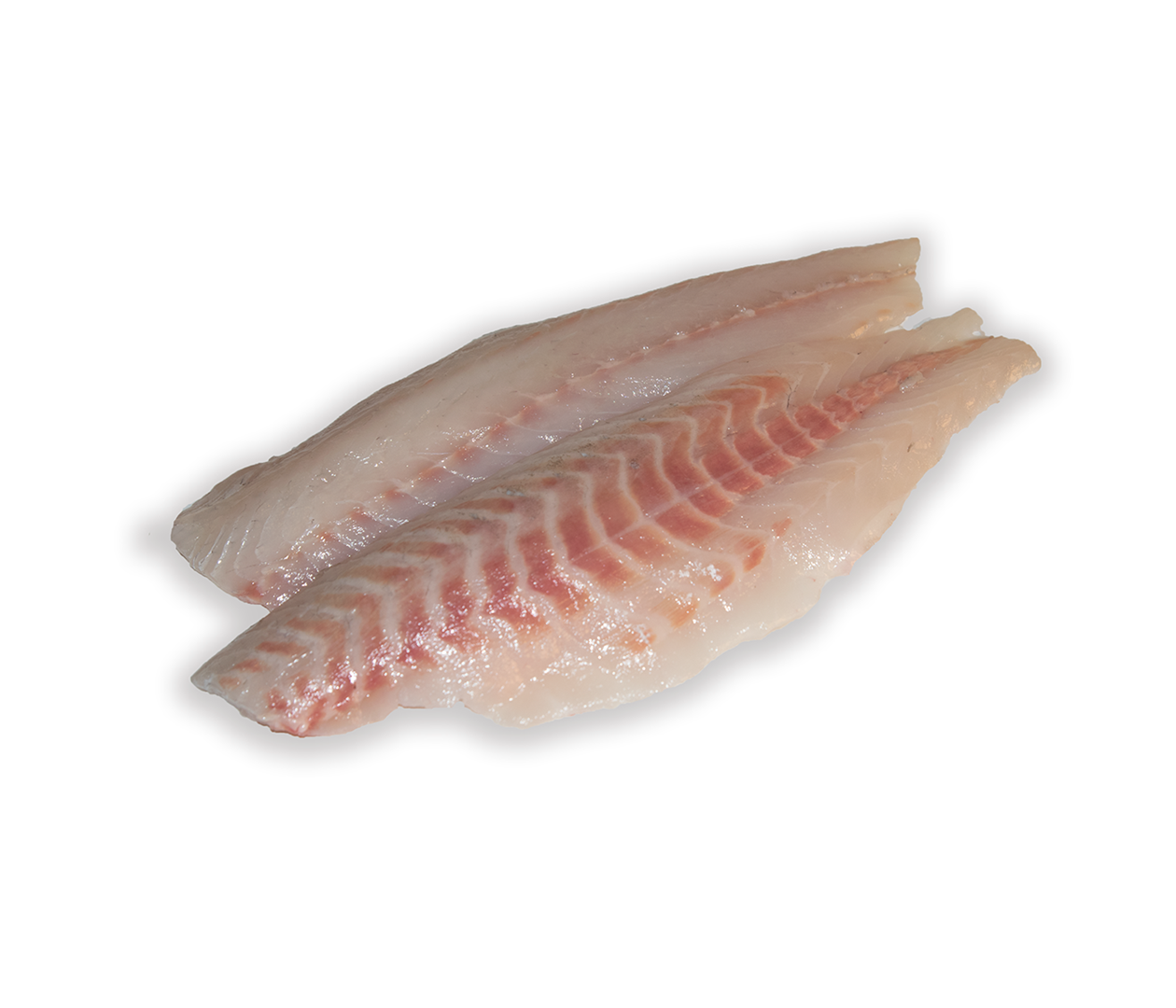 Productafbeelding SEA BASS FILET SKINLESS 400-600 GR