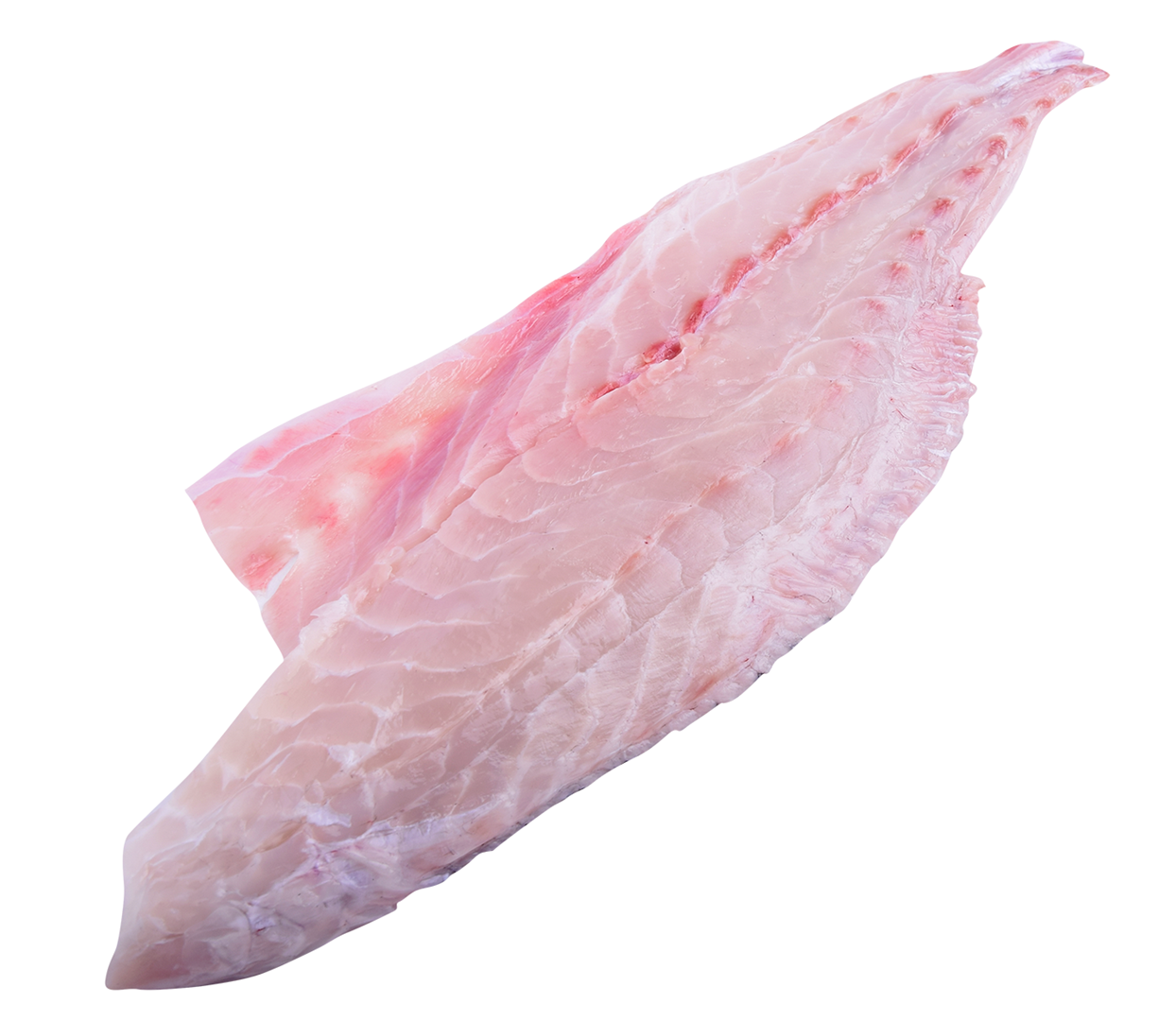 Productafbeelding CORVINA FILLET SKINLESS PIN BONE OUT