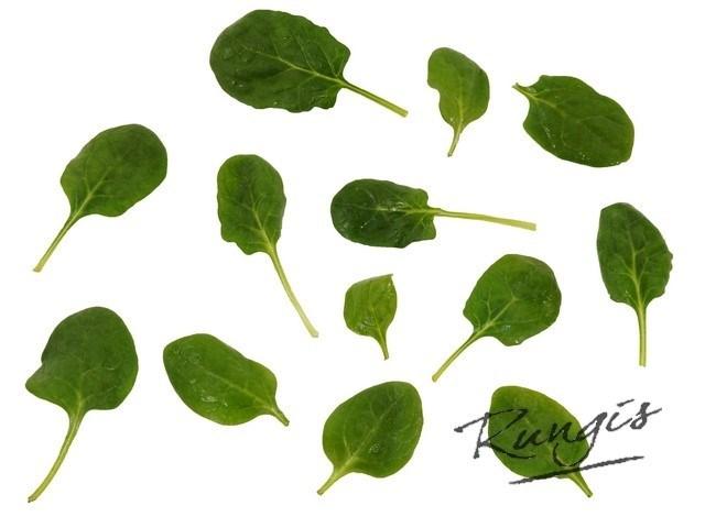 Productafbeelding Rungis Gewassen jonge spinazie